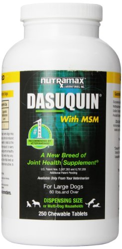 Nutramax Dasuquin With Msm 250 Count Chew Tablets For Large Dogs