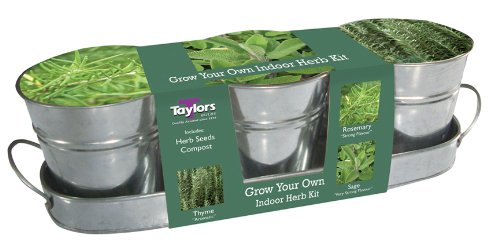Taylor's Windowsill Herb Kit: Rosemary, Sage & Thyme