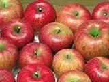 信州のりんご農園直送 サンふじ ふぞろいの林檎たち® L・M・S込みのお届け 10kg(22~50個) ランキングお取り寄せ