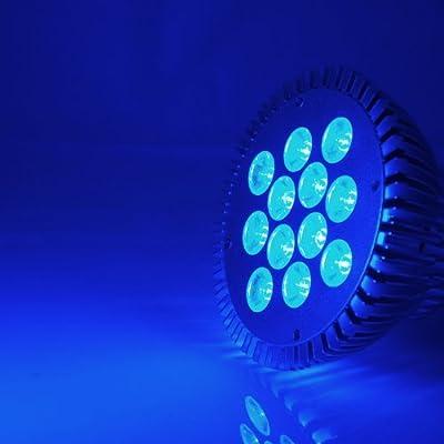 ABI 12W LED Grow Aquarium Light 100-240V (Blue 450-470nm), Model: GR-PAR38-12W-B , Home & Outdoor Store