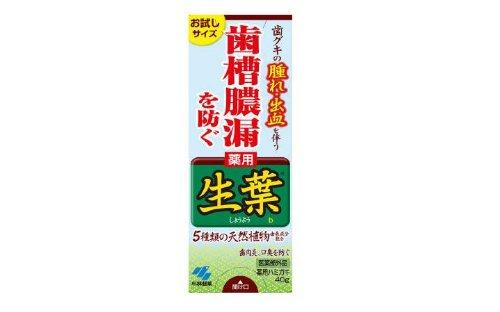 小林 生葉b 40g