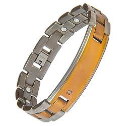 Aarogyam Biomagnetic Titanium Bracelet