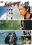 不良少年(ヤンキー)の夢 [DVD]