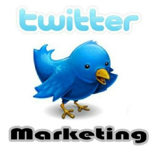 Tweet Your Ad on My Twitter Account 5 Times Daily for 6 Months Plus Pinterest for $4.59