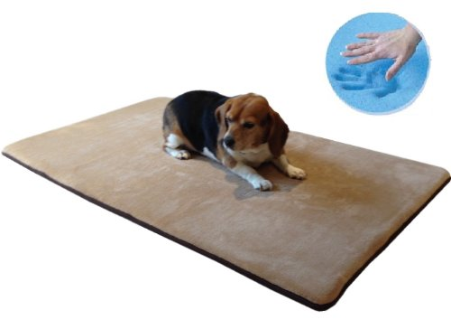 Funk N Tidiness With Doggy Doormats Funk This House