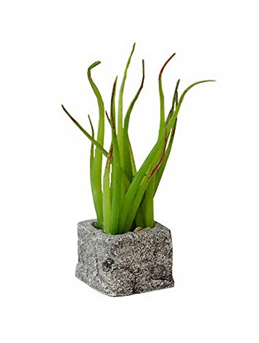 The Artificial Miniature Potted Plant Home Decoration [H]