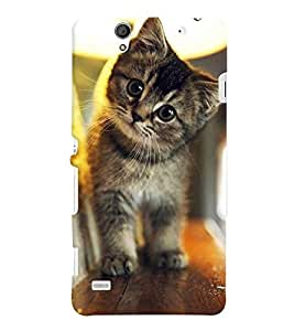 Printvisa Kitten On A Shelf Back Case Cover for Sony Xperia C4 Dual E5333 E5343 E5363::Sony Xperia C4 E5303 E5306 E5353