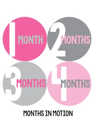 Months in Motion 305 Monthly Baby Stickers Milestone Age Sticker Photo Prop Newborn Girl Pink