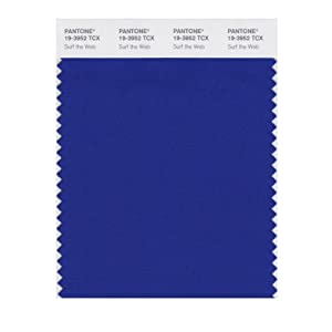 Pantone smart swatch 19 3952 surf the web amazon ca tools amp home