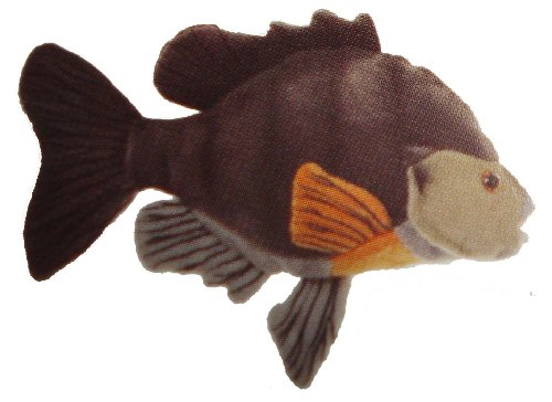 Sunfish 7 stuffed plush animal cabin critters for Fish stuffed animal