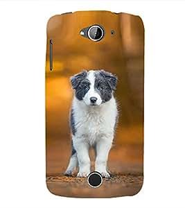 Funny Dog Wallpaper 3D Hard Polycarbonate Designer Back Case Cover for Acer Liquid Z530 :: Acer Liquid Z530S