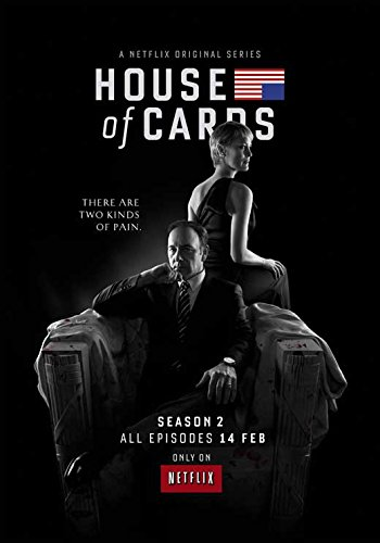 House of Cards (TV) Movie Poster 11 x 17 Style B (2014) Unframed