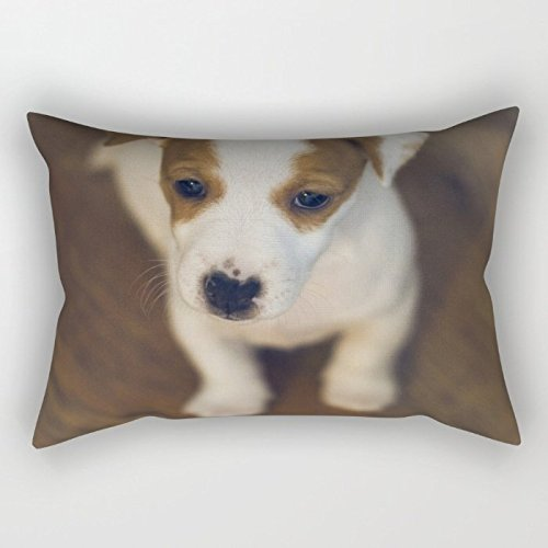 Dogs Throw Pillow Case 20 X 26 Inches / 50 By 65 Cm For Teens Girls,birthday,seat,girls,car Seat,kids With Two Sides