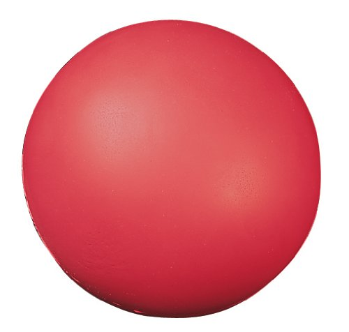 Champion Sports 7 Inch Coated High Density Foam Ball