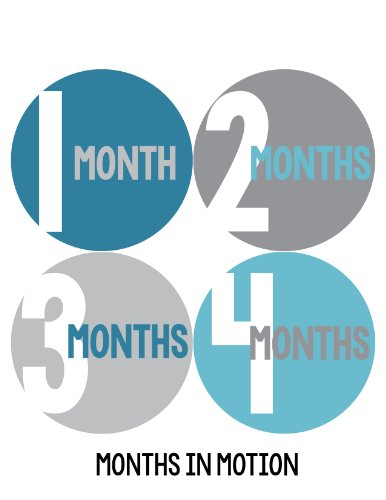 Months in Motion 304 Baby Month Stickers for Newborn Boy Blue Grey- Style 304 - 1