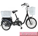 自転車の 三輪 自転車 電動 子供 : バッテリー搭載!電動自転車 ...