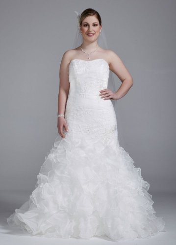 Organza Plus Size Wedding Dress with Lace Appliques and Ruffled Skirt Style...