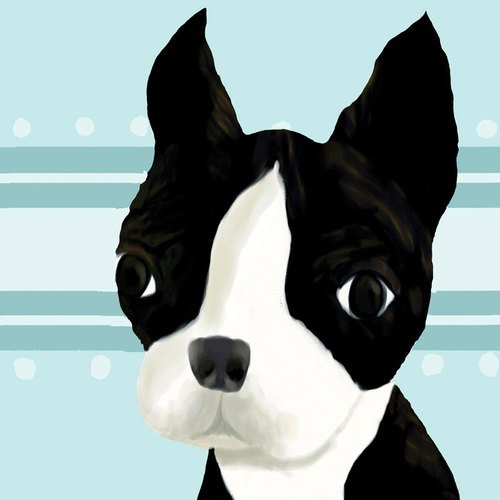 Oopsy Daisy Bea The Boston Terrier Blue Stretched Canvas Wall Art by Meghann O'Hara, 21 by 21-Inch