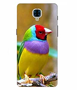 Case Cover Bird Printed Colorful Hard Back Cover For OnePlus 3