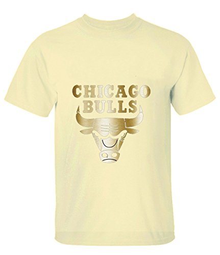 man-short-sleeved-tshirt-chicago-bulls-black-gold-collection