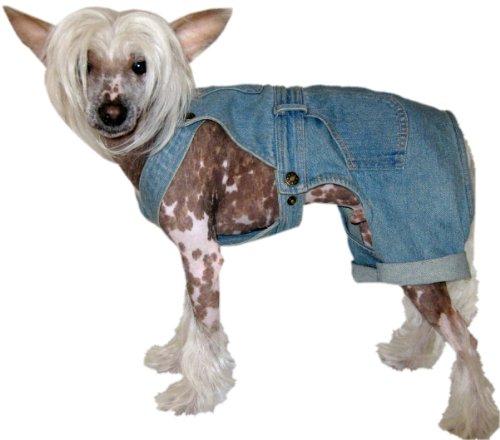 Bild von: Coole Jeans Hose für Hunde - Hundemode - Dogs Stars