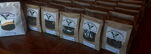Thorvin Kelp for Animals (1 LB)