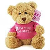 Gund Im the Big Sister Teddy Bear
