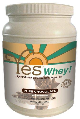 YES Whey Protein Powder - Chocolate 21oz (600g)