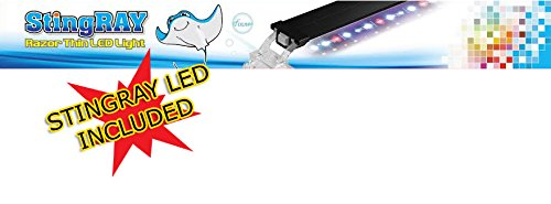 Finnex Foreign Refugium Breeder Hang-On Box for Pets, Water Pump, Sting LED