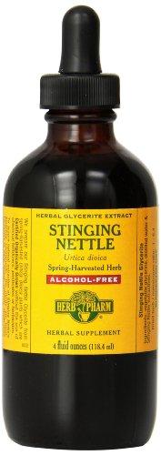 Herb Pharm Stinging Nettle Glycerite Supplement, 4 Ounce