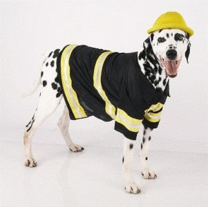 Firemutt (Fireman Dog) Pet Costume Size Medium