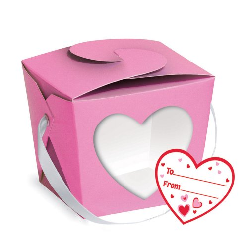 Creative Converting Treat Boxes with Windows, Pink and Red, 4 Pint Pails Per Package