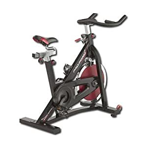 ProForm 290 Spinning Bike Image