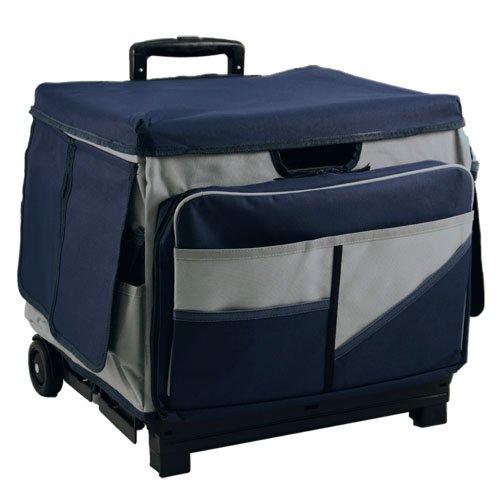gavin 39 s reviews rolling carts for teachers. Black Bedroom Furniture Sets. Home Design Ideas