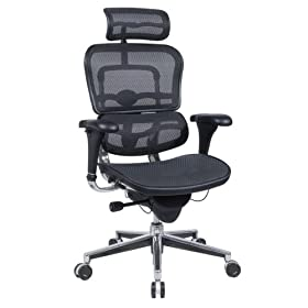 Ergohuman Executive Chair With Headrest