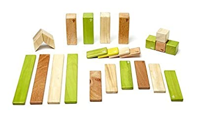 Magnetic Wooden Tegu Block Set, Jungle 24 Piece Available For Sale