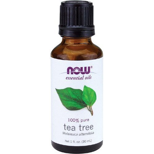 essential oils tea tree fl