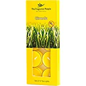The Fragrance People Anti Mosquito Tealight Candle - Set Of 10 (7.8 Cm X 1.8 Cm X 19.5 Cm, Yellow)