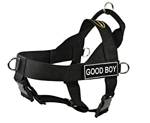 DT Universal Fun No Pull Dog Harness, Good Boy, Black, Large, Fits Girth Size: 31-Inch to 42-Inch