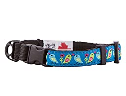 RC Pet Products 1/2-Inch Kitty Clip Cat Collar, 8 by 10-Inch, Love Birds