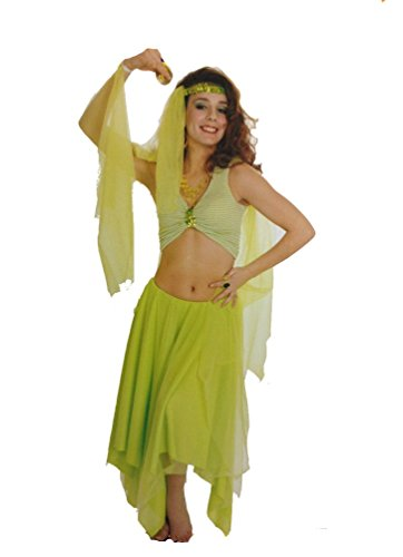 Halloween Costume Sexy Harem Dancer Girl Arabian Princess