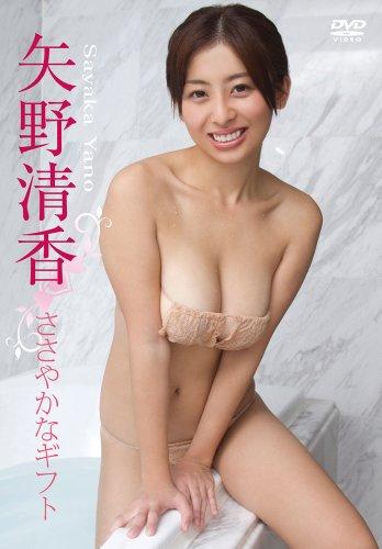 矢野清香/ささやかなギフト [DVD]