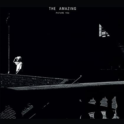 The Amazing - Picture You