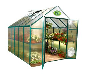 Systems Trading EG45810 8- By 10-Foot Backyard Hobby Greenhouse, Green