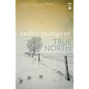 True North (Salt Modern Fiction)