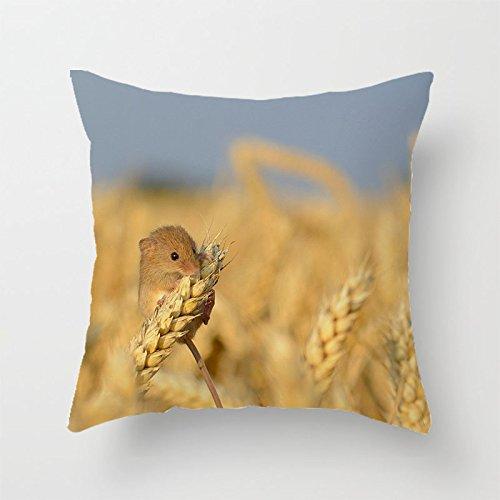 yinggouen-comer-granos-decorar-para-un-sofa-funda-de-almohada-cojin-45-x-45-cm
