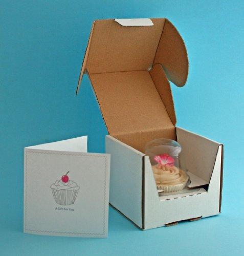 Cakes-Away Cupcake-Box, zum Verschicken für 1 Cupcake