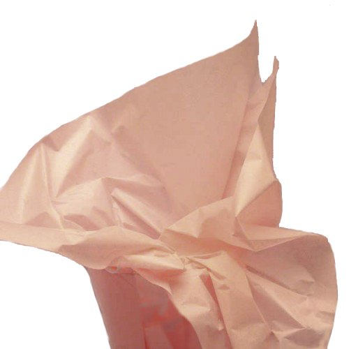 Dress My Cupcake DMC79456 50-Piece Tissue Paper, 20 by 14-Inch, Coral