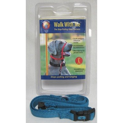 Hamilton 5/8-Inch Medium Dog Head Harness, 25 to 60-Pound, Ocean Blue