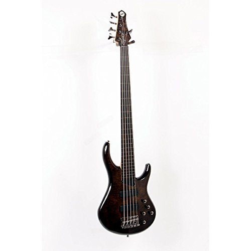 Mtd Zx 5-String Fretless Electric Bass Guitar Trans Black, Ebonol Fretboard 888365272931